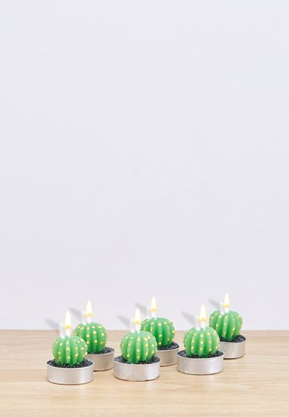 6 Pack Cactus Candles