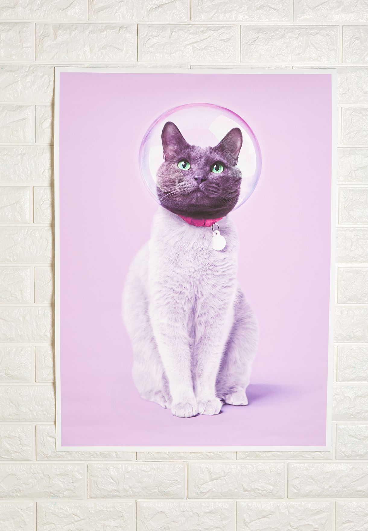 Cute Cat Artwork 50x70cm
