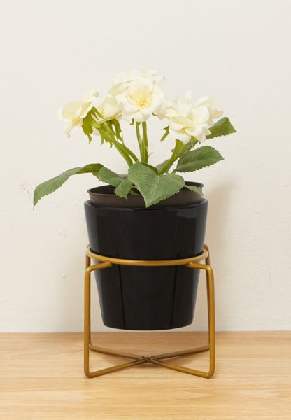 Plant Pot with Wire Stand