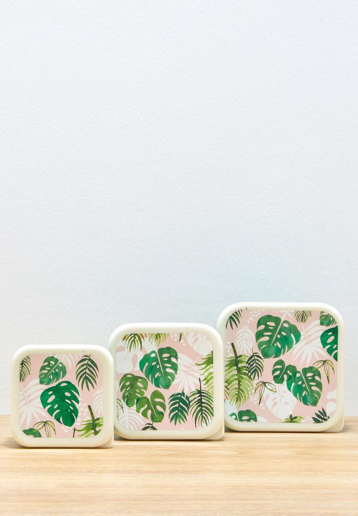 3 Pack Tropical Palm Snack Boxes