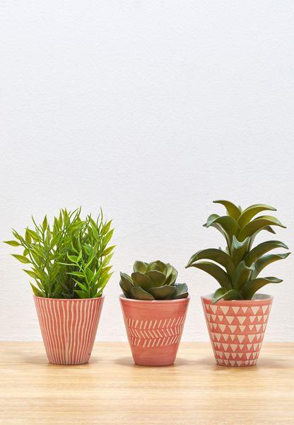 3 Pack Mini Planters