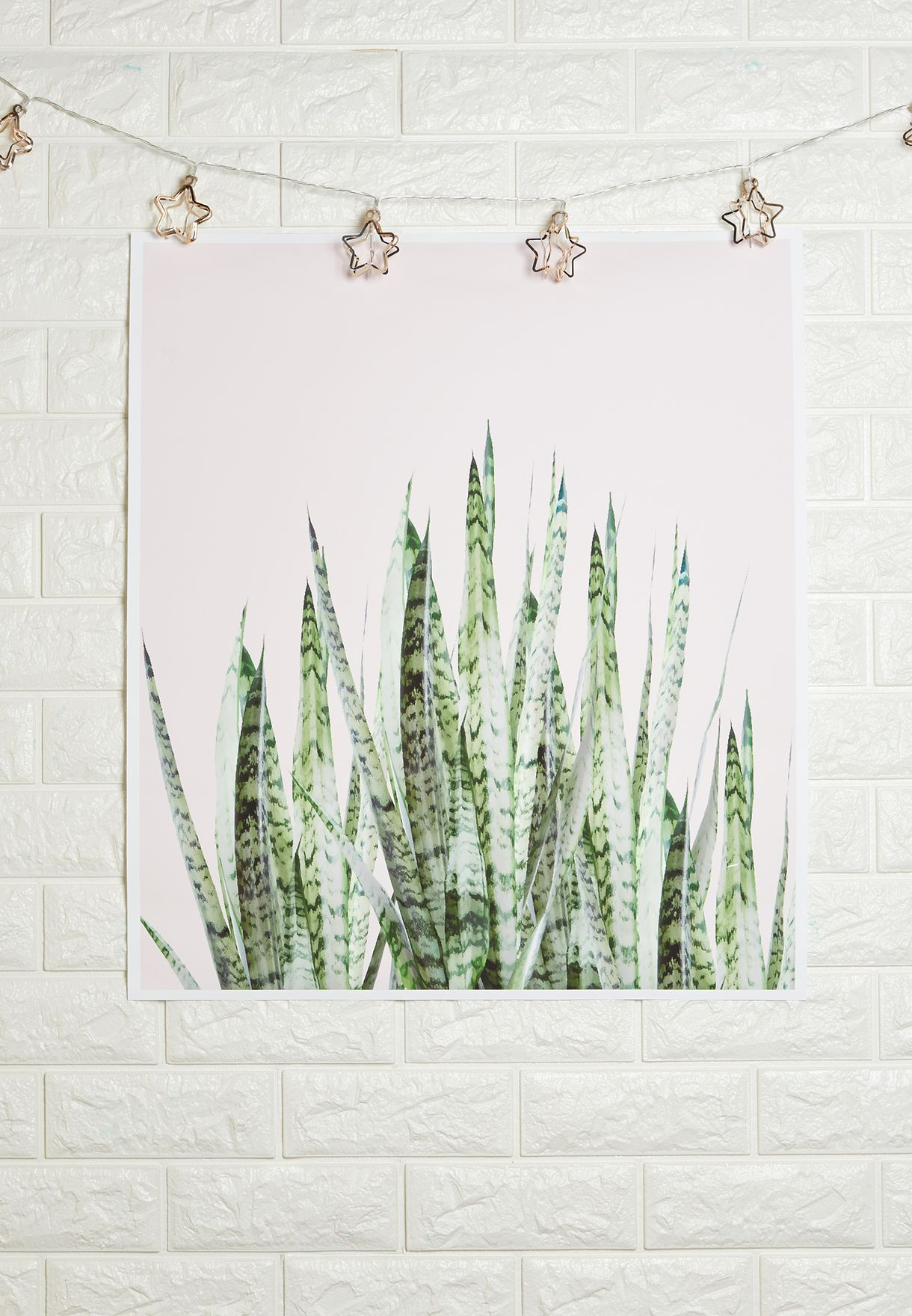 Botanical Art Print 52x60cm