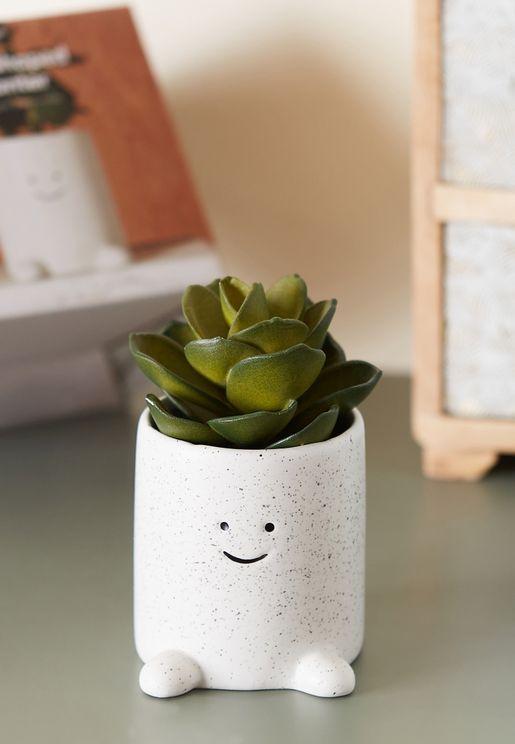 اصيص نبات صغير