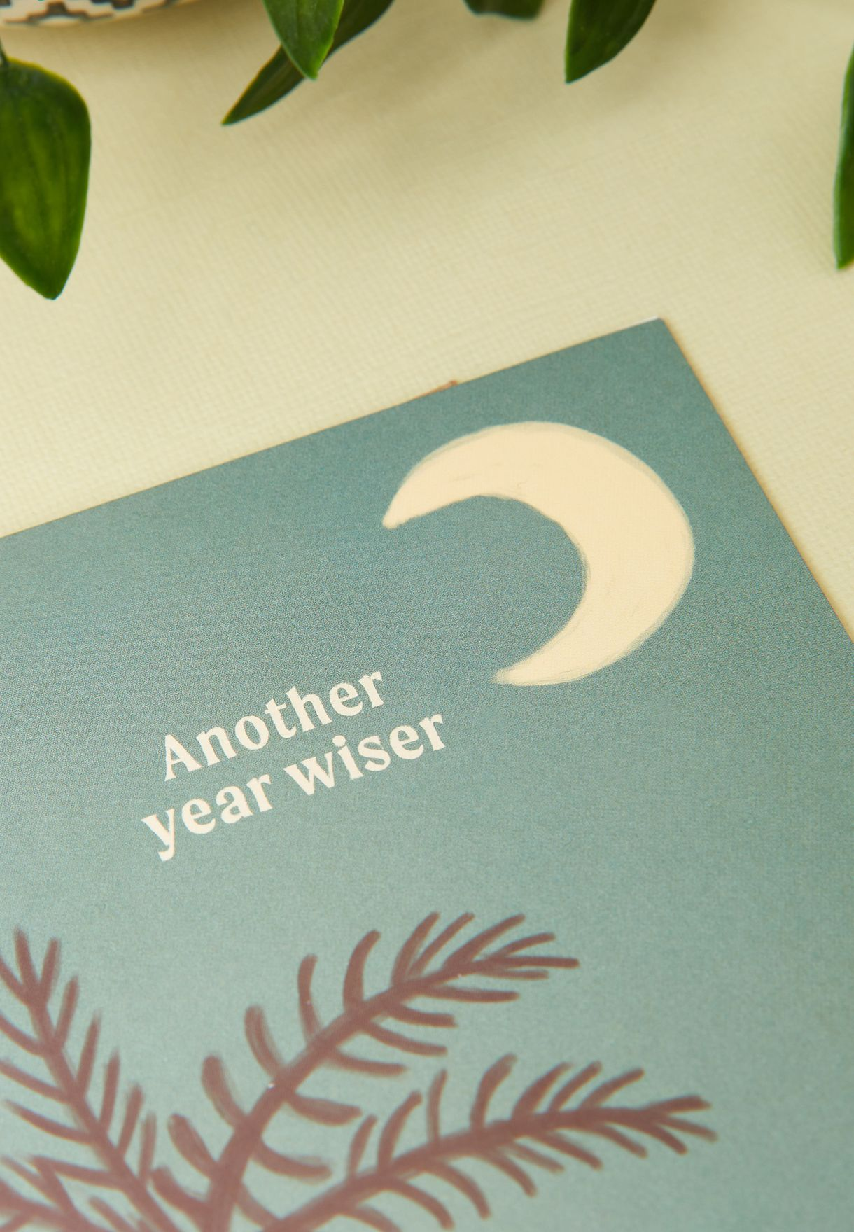 Another Year Wiser Birthday Card