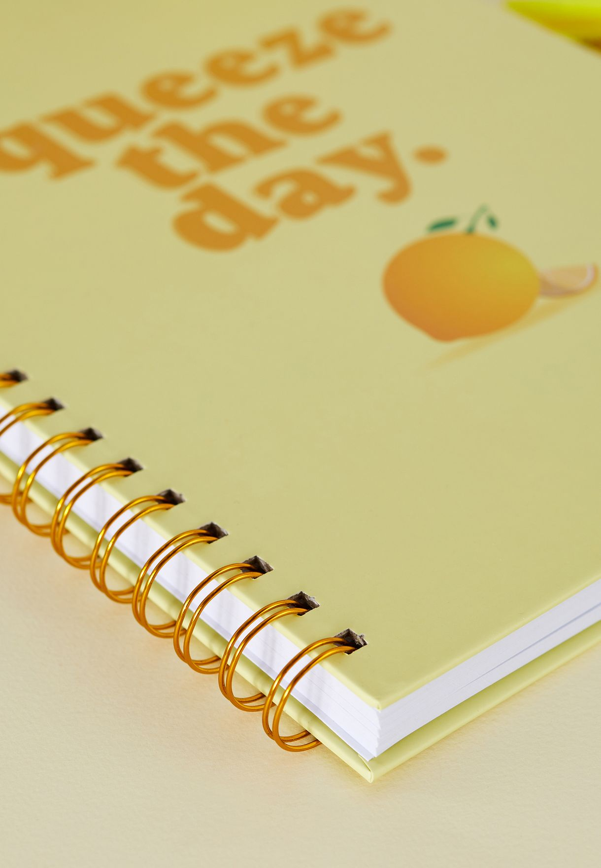 A4 Squeeze The Day Notebook