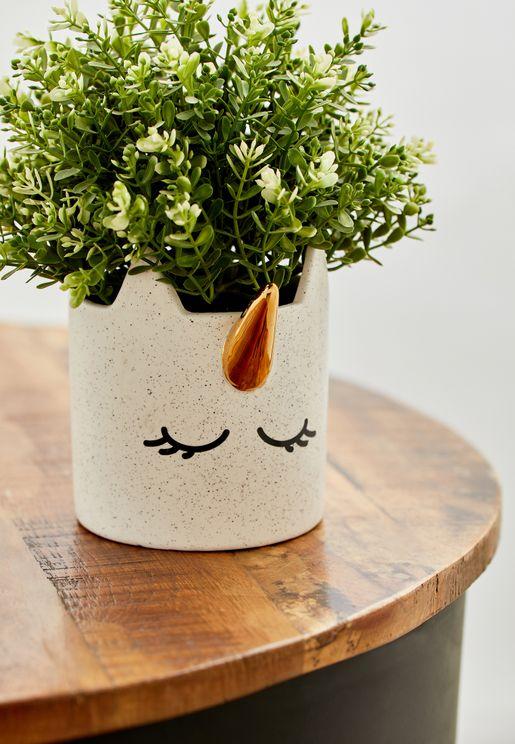 اصيص نبات يونيكورن