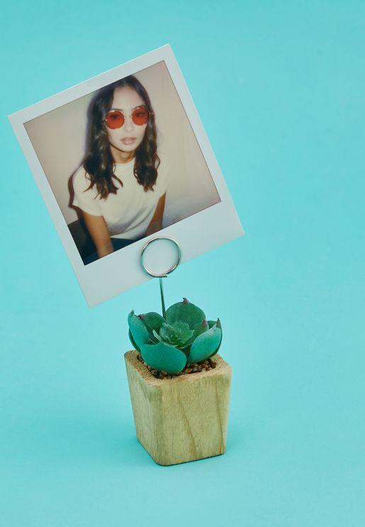 وعاء نباتات وحامل للصور