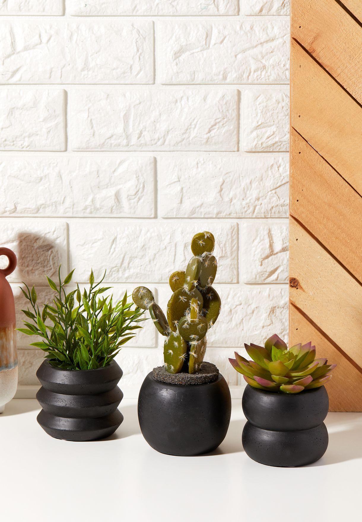 مجموعة من 3 اصيص نبات اسمنتية
