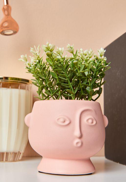 اصيص نباتات شكل وجه