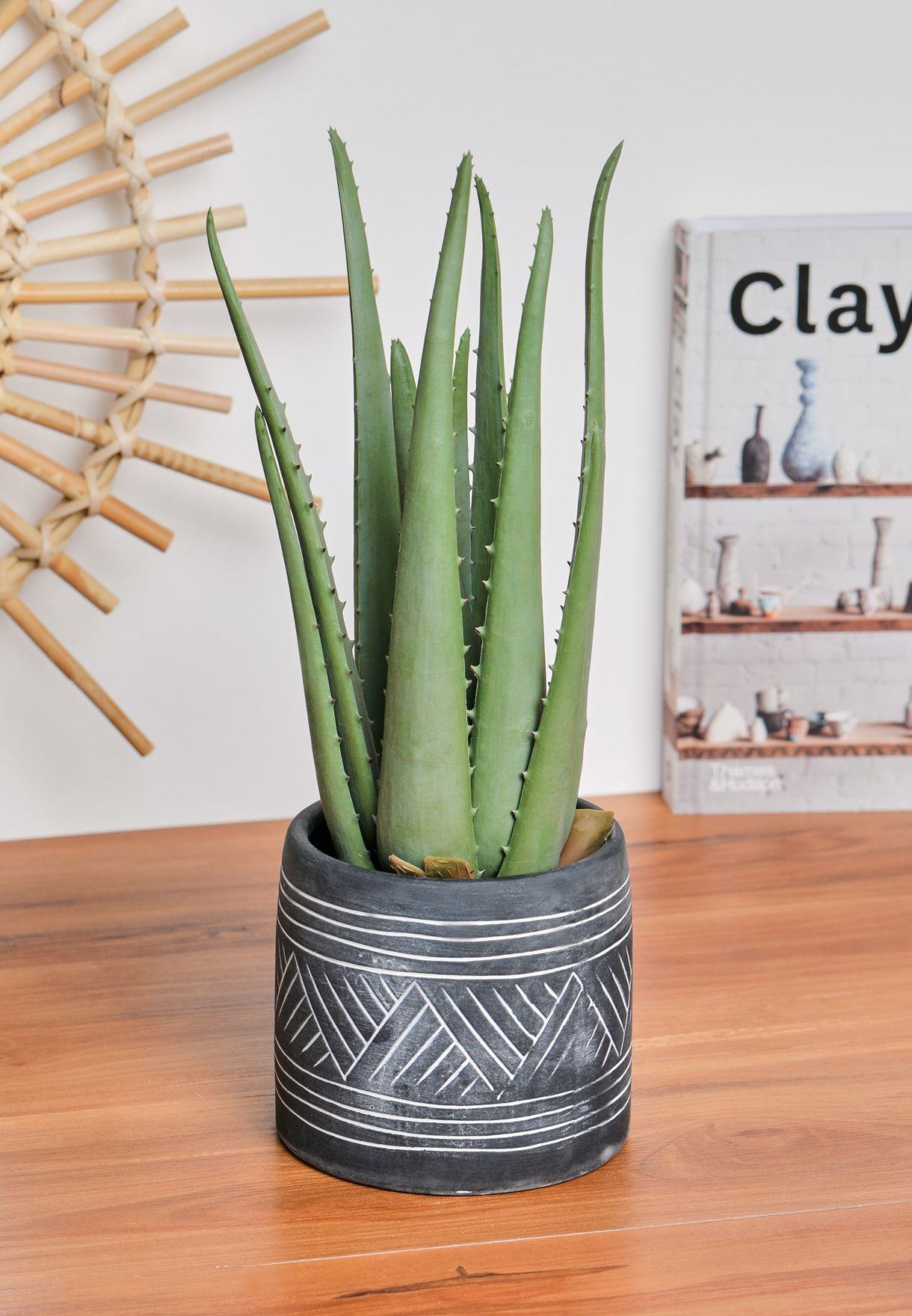 Fiori Faux Aloe Vera with Cement Pot