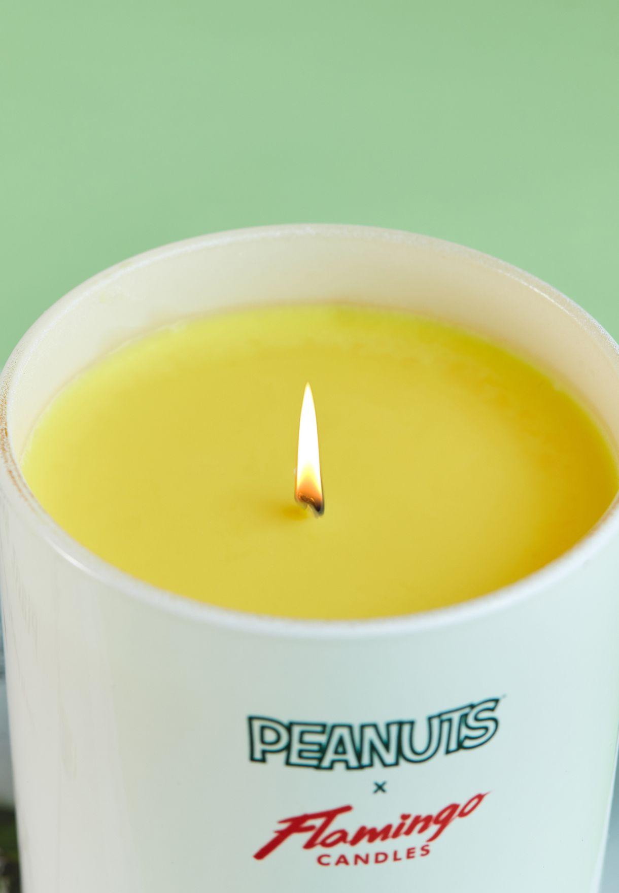 Peanuts Gang Lemongrass & Lime Candle