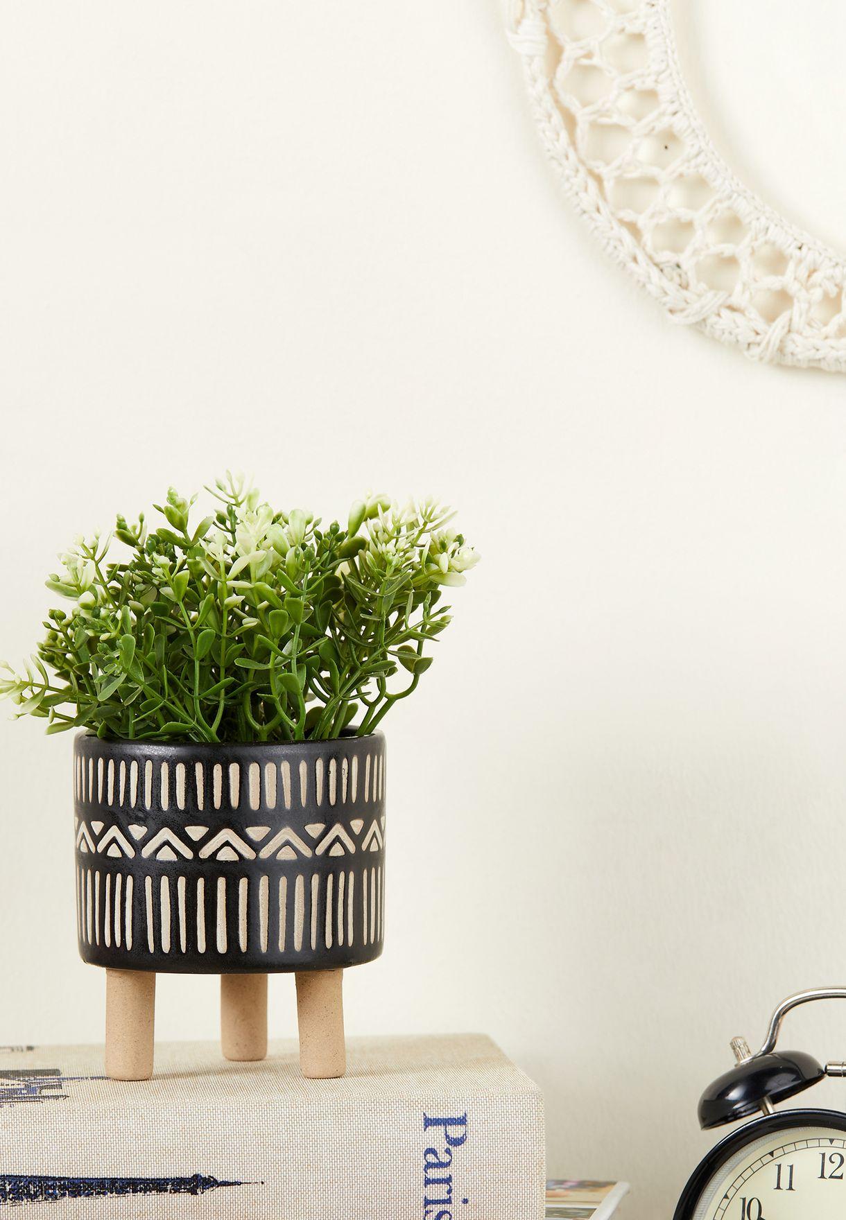 اصيص نباتات بوهيمي
