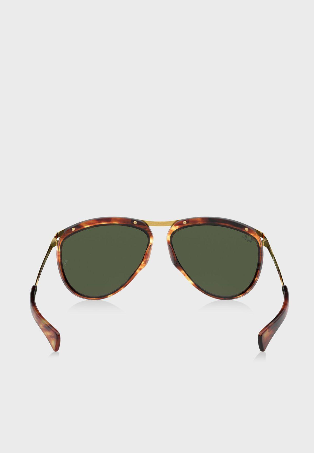 0RB2219 Aviator Sunglasses