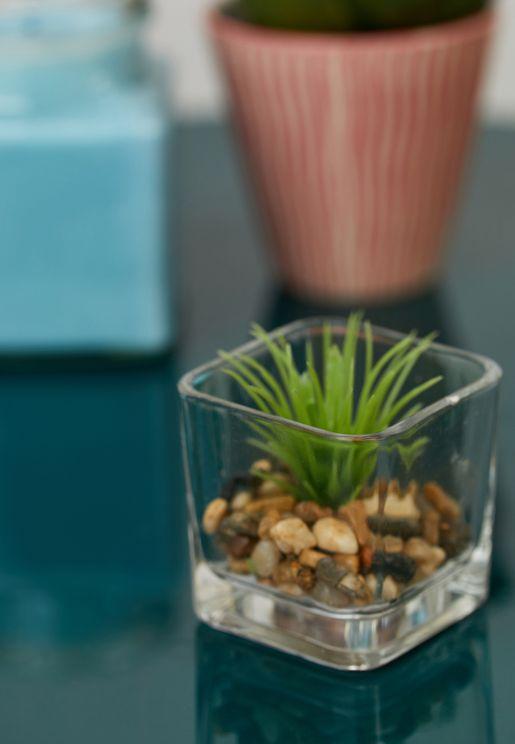 وعاء نباتات زجاجي