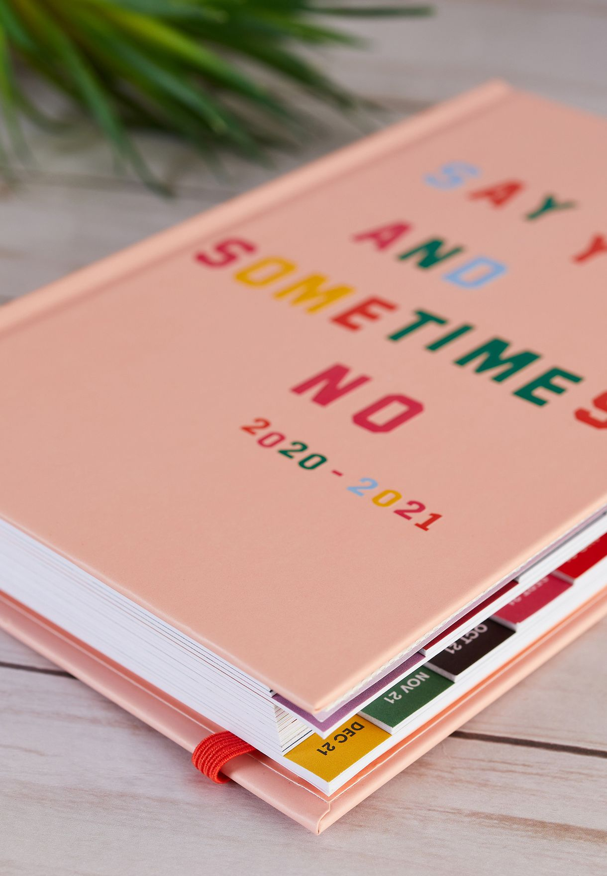 17 Month Classic Planner