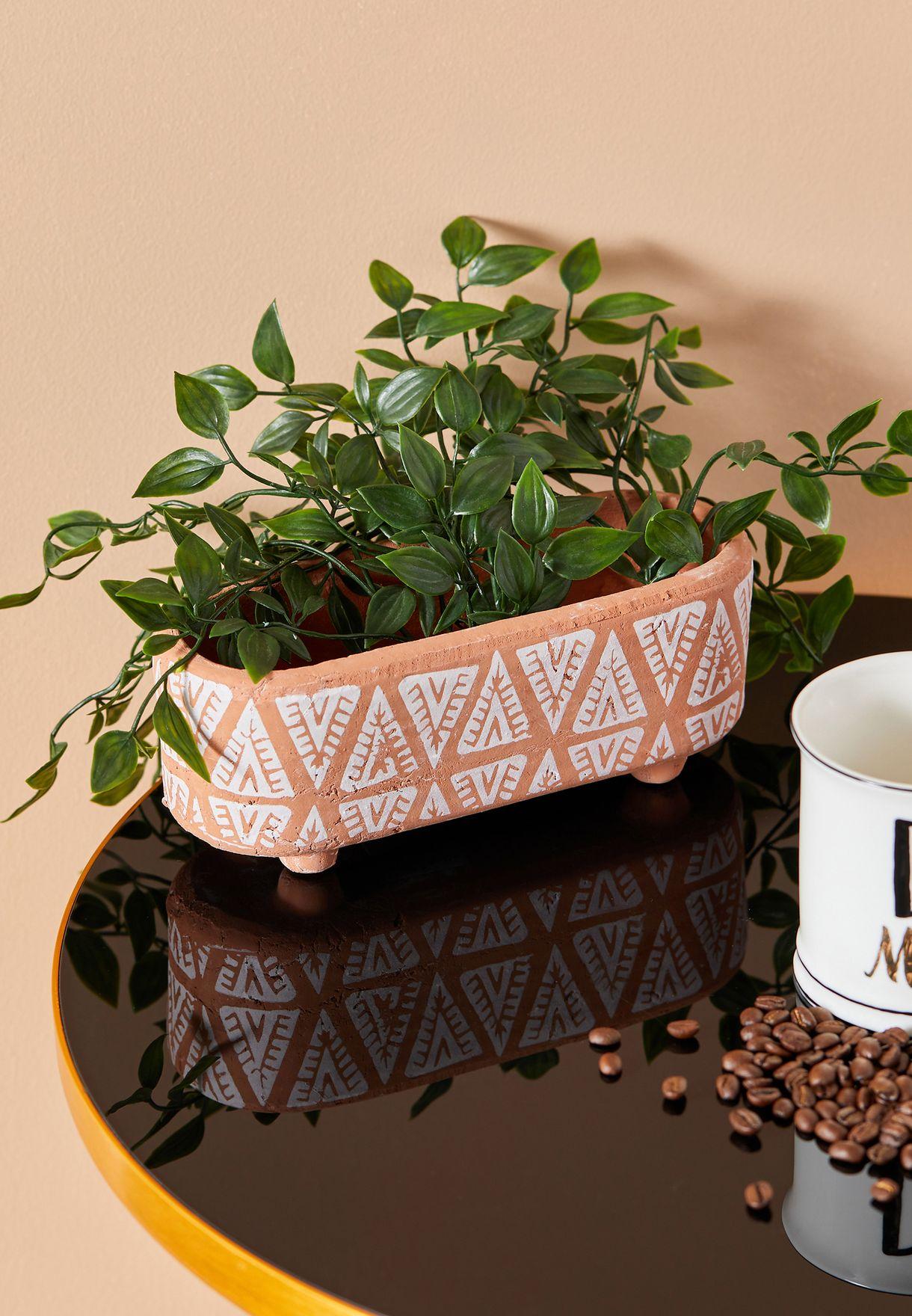 اصيص نباتات بتصميم هندسي