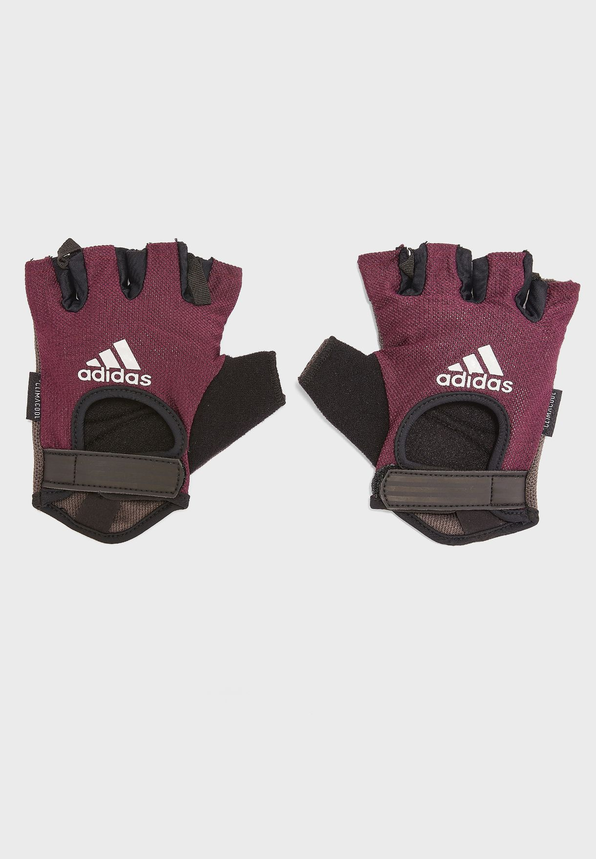 Cien años liebre Silla  Buy adidas purple Performance Gloves for Women in MENA, Worldwide    ADGB-13213