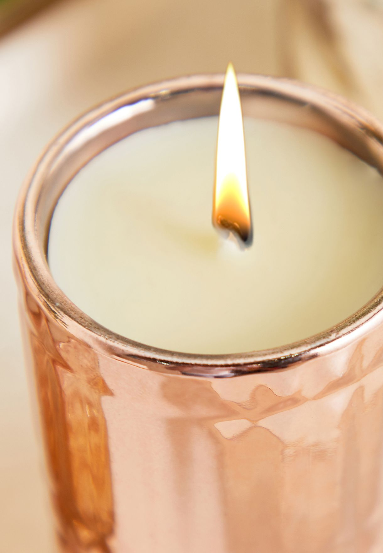 Wild Fig Embrossed Candle