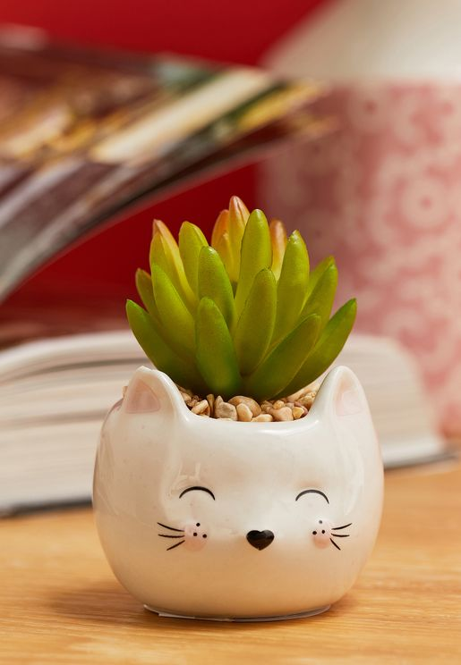 اصيص نباتات علي شكل قط