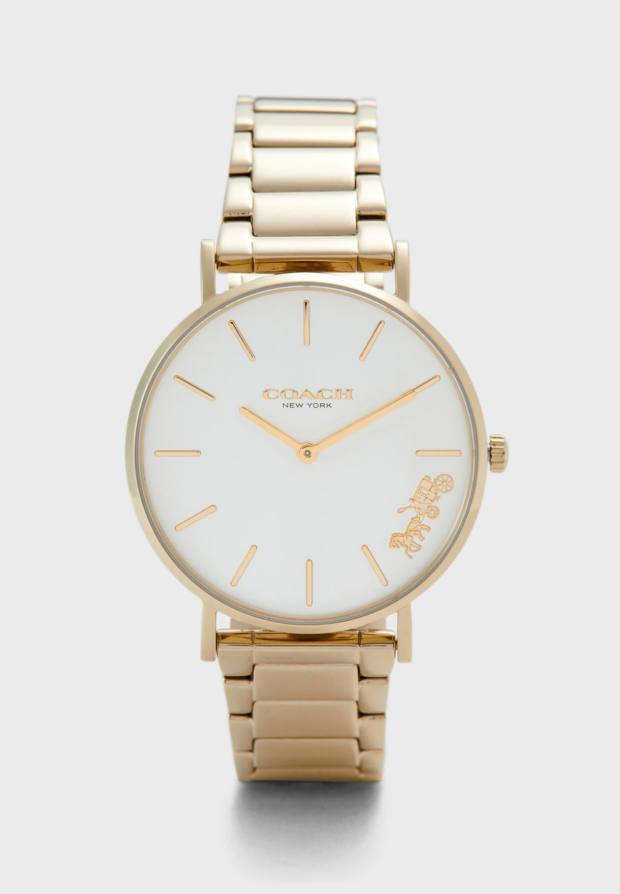 Perry Ionic Steel Strap Watch