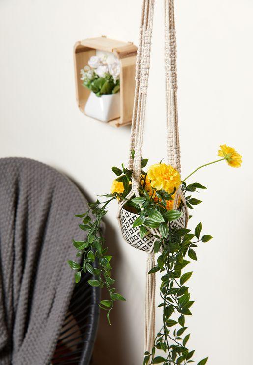 وعاء نباتات نسيج