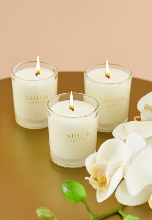 3 Pack Midnight Rose, Pilgrim & Summer Dreams Mini Candles
