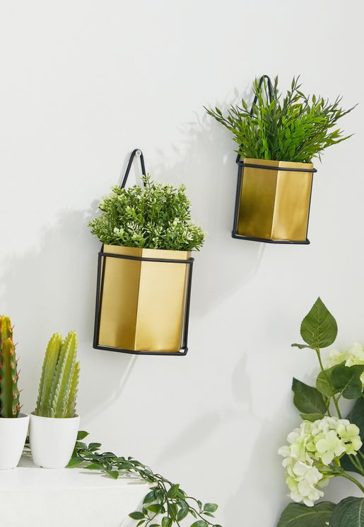 2 Pack Hexagon Wall Plant